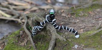 Das Stativ GorillaPod im Test auf unebenen Waldboden