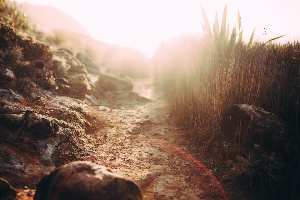 Eine Aufnahme mit viel Bokeh und Sand und Steinen im Vordergrund.