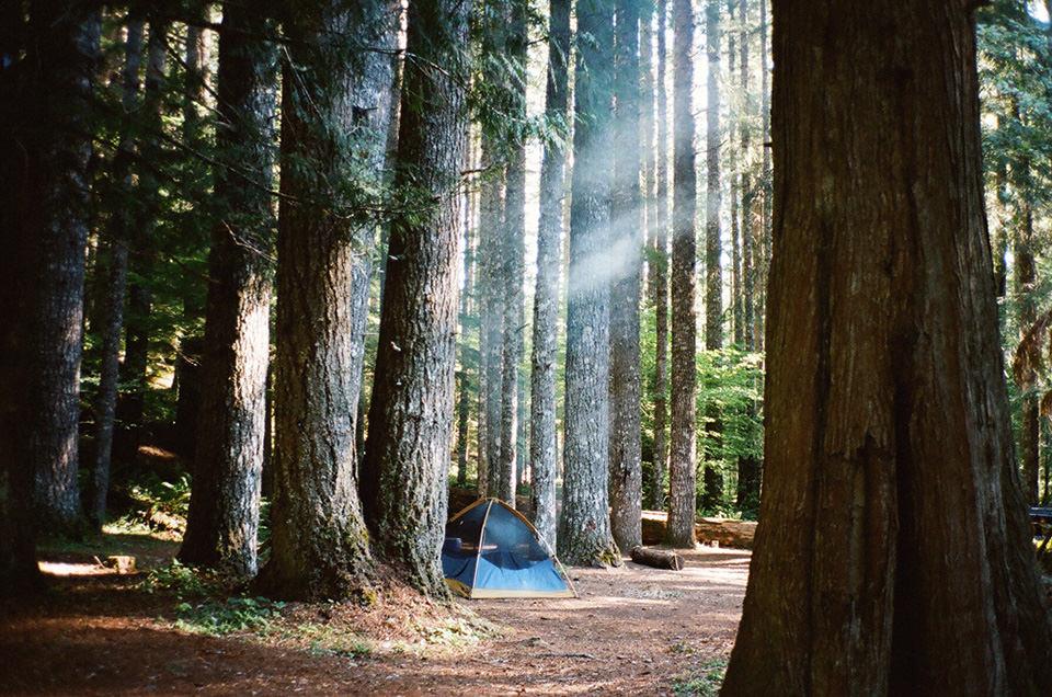 Ein Zelt im Wald.