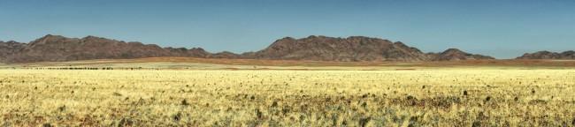 Steppenlandschaft mit gelbem Gras vor einem Gebirge.