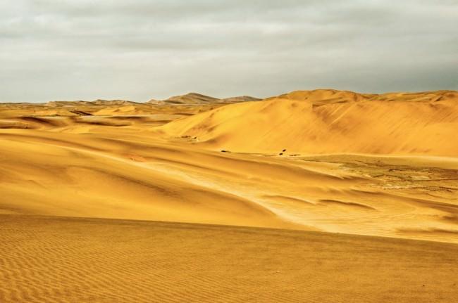 Gelbe Wüste.