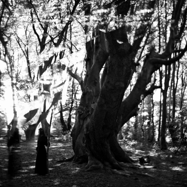 Ein Mädchen in langem schwarzen Kleid mit Holzkrone und Stab steht vor einem großen Baum in einem Wald, über ihr Lichtreflexionen.