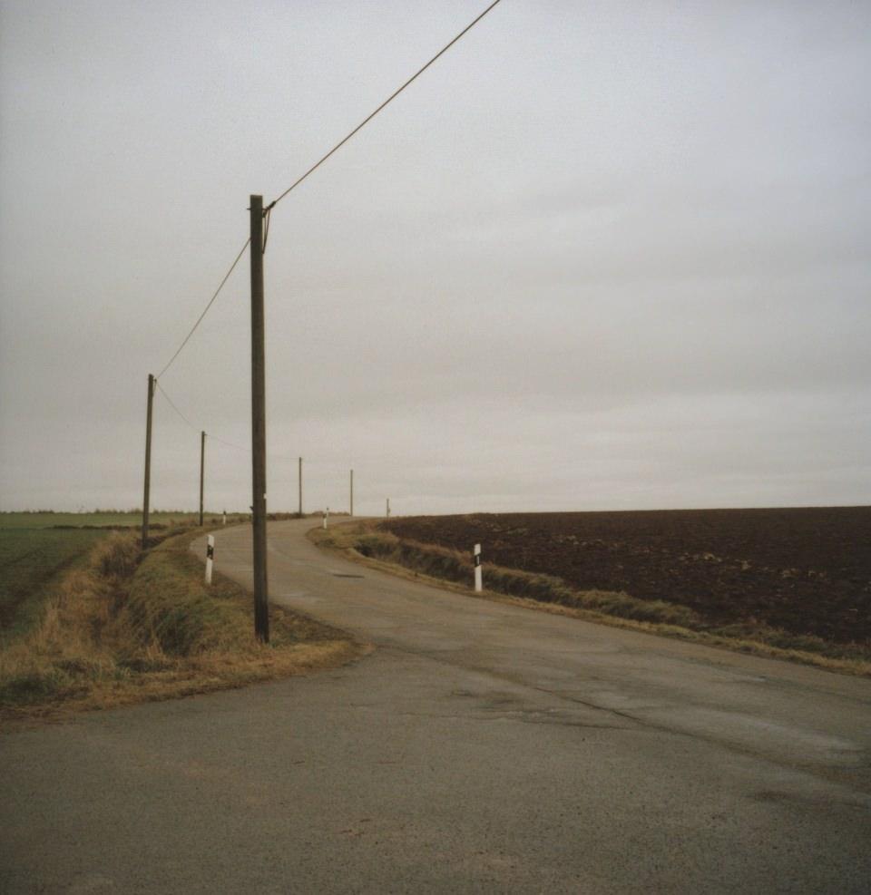 Eine Straße mit Telegrafenmasten, die zwischen zwei Feldern verläuft.