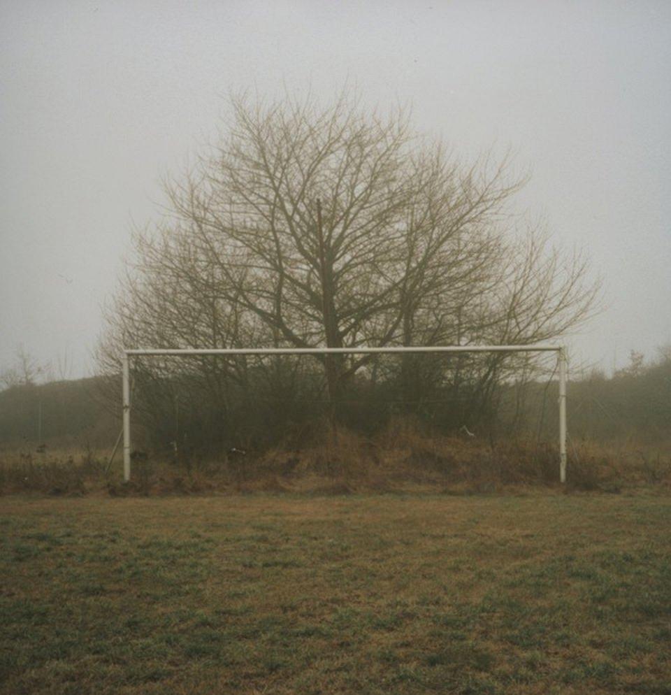 Eine neblige Wiese, auf der vor einem Baum und Gebüsch ein Fußballtor steht.