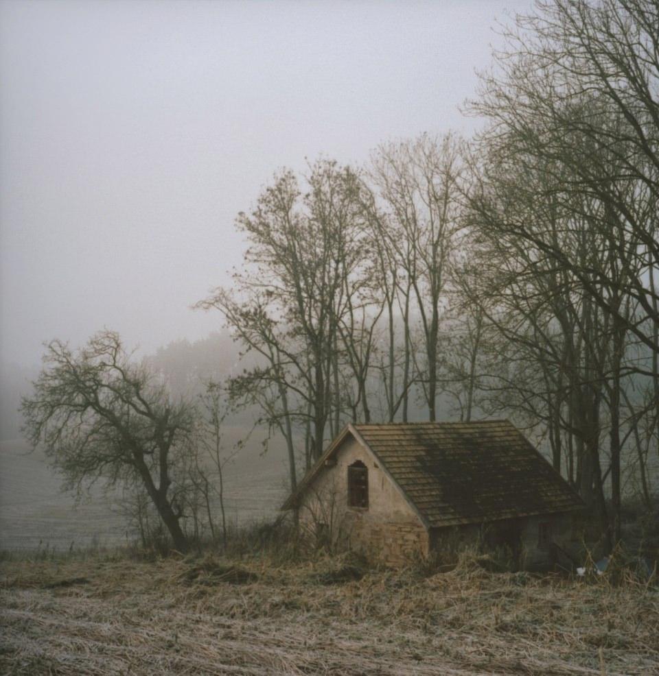 Ein Haus, umgeben von einigen Bäumen, am Rande eines Feldes.