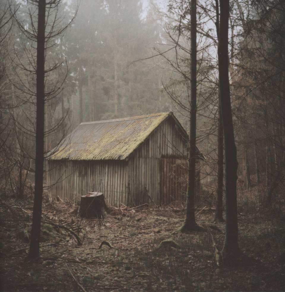 Eine Hütte in einem nebligen Wald.