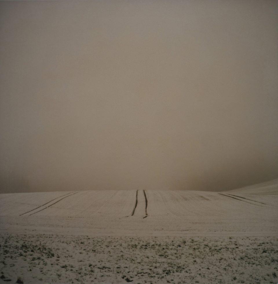 Ein schneebedecktes Feld im Nebel.