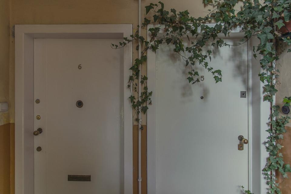 Zwei Türen mit Efeuranken.