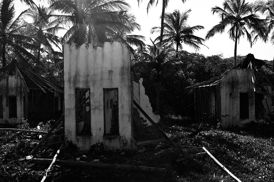 Hausruinen vor einigen Palmen.