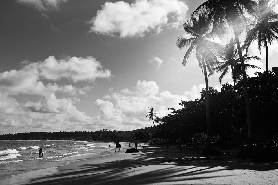 Eine Strandszene.