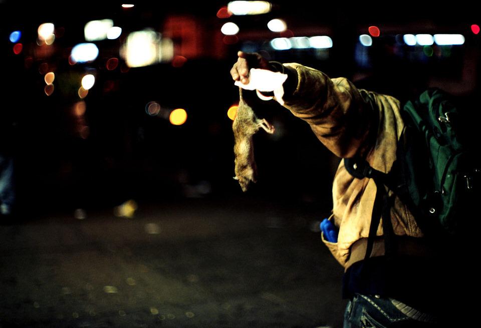 Straßenfotografie: Eine Ratte, die am Schwanz hochgehalten wird.