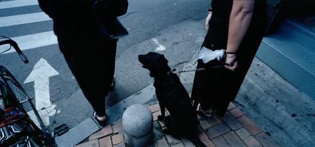 Zwei Menschen und ein Hund zu ihren Füßen.