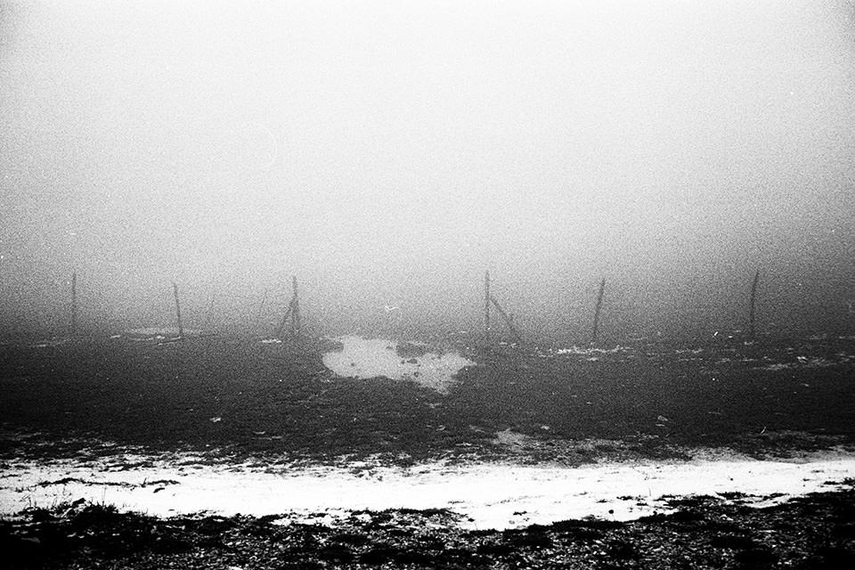 Karge Landschaft und ein Zaun im Nebel.