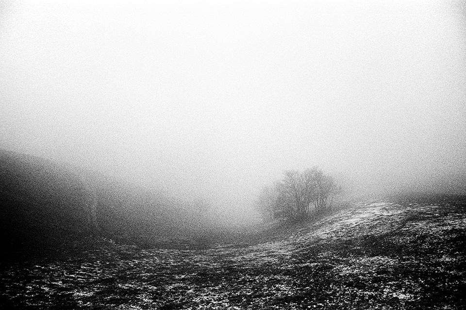 Karge Landschaft im Nebel.