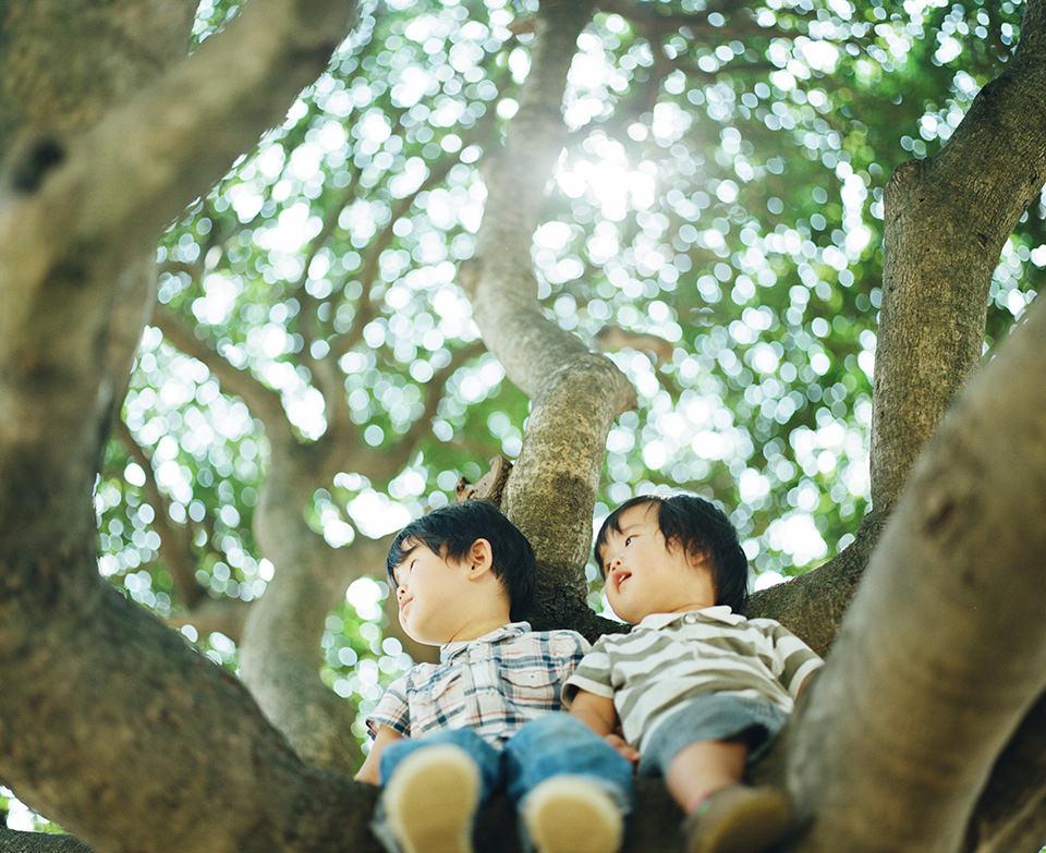 Zwei Kinder sitzen in einem Baum und schauen nach links.
