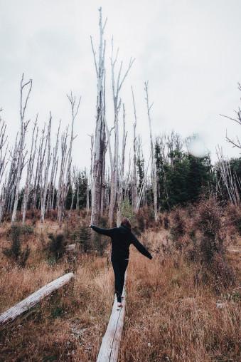 Mädchen balanciert auf einem Stamm vor einer Kulisse toter Bäume