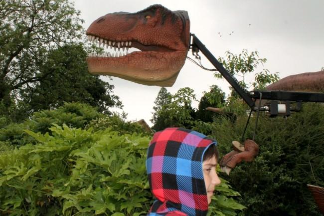 Dinosaurierkopf über Menschenkopf.