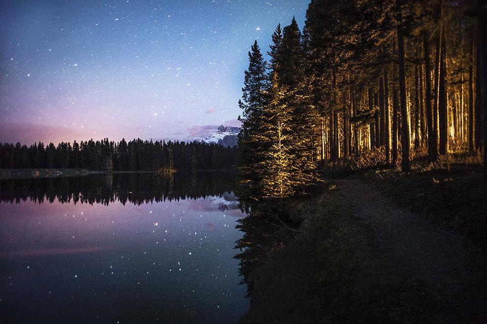 Der Wald und ein See mit Sternenhimmel.