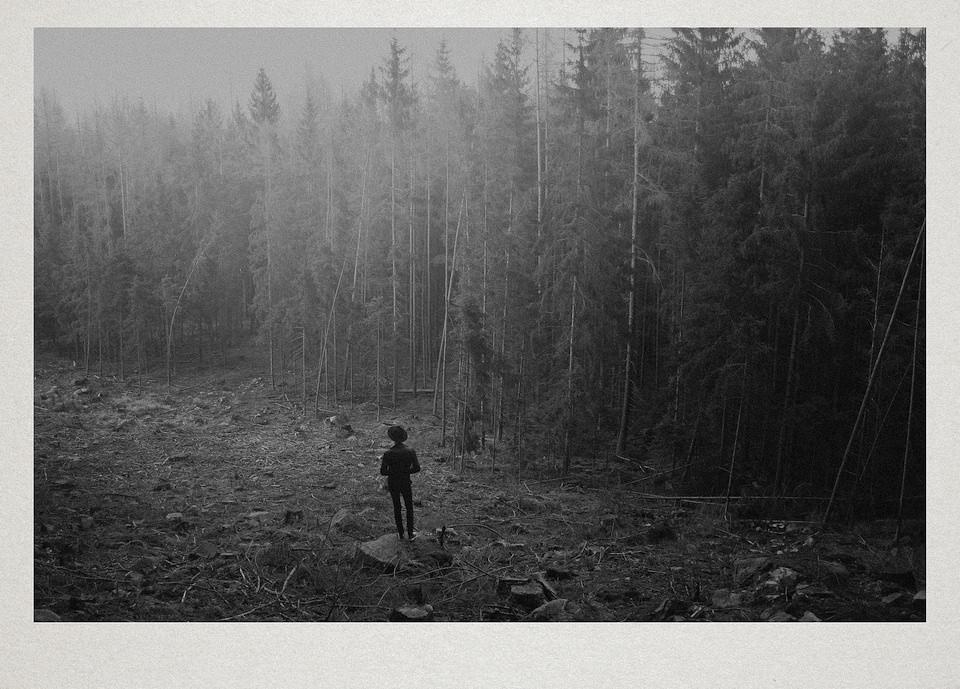 Eine Person steht vor einem Wald.