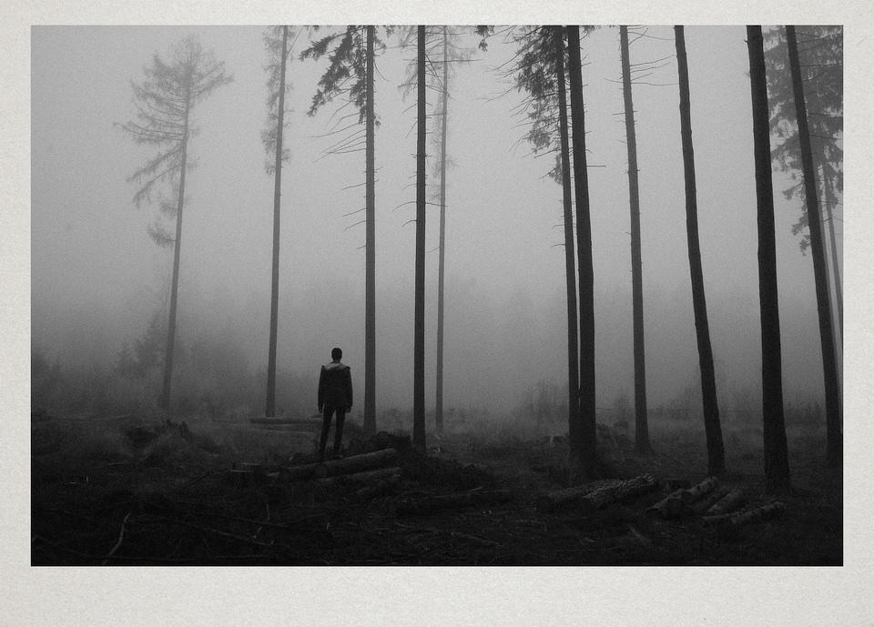 Eine Person steht im Nebel in einem lichten Wald.