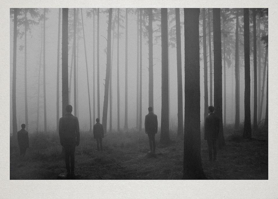 Fünf Personen stehen im Nebel in einem lichten Wald.
