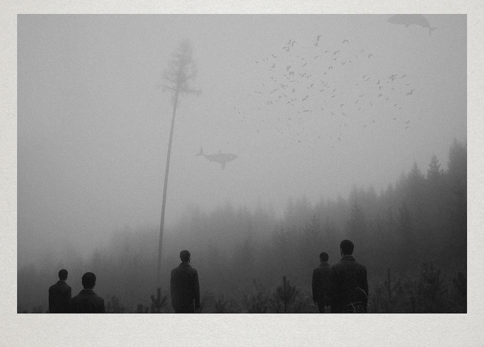 Fünf Personen stehen vor einem Wald und schauen zum Himmel auf, wo ein Vogelschwarm und zwei Wale fliegen.