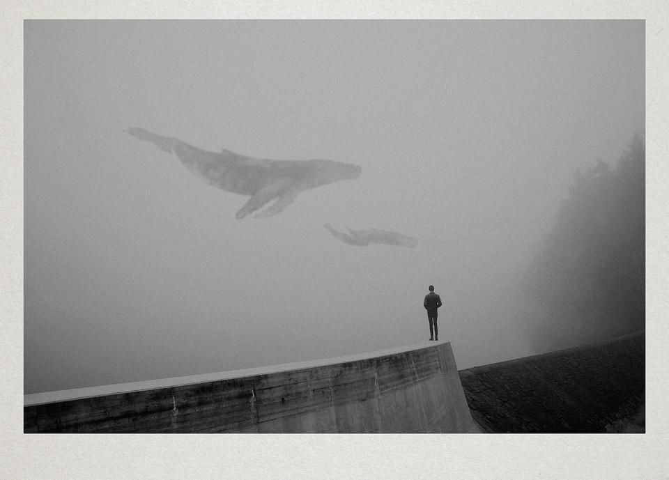 Ein Mann steht auf einem Steg, über ihm fliegen zwei Wale.