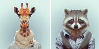 Eine Giraffe mit Schal und ein Waschbaer im Hemd
