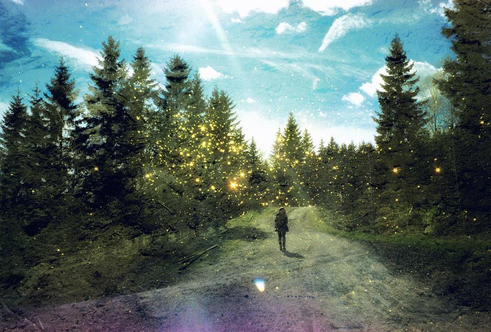 Bunte Doppelbelichtung mit viel Glitzer und Wald.