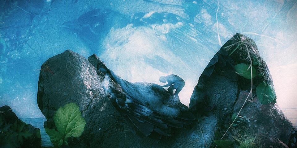 Doppelbelichung: Eine Person im Hintergrund und ein toter Vogel auf dem Boden.