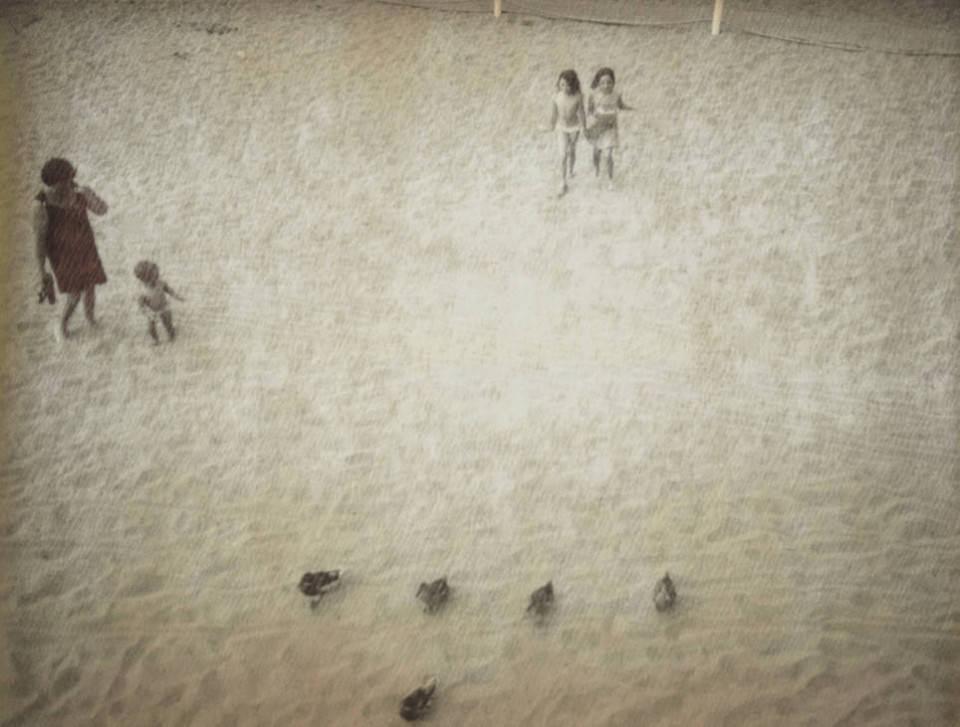 Kinder und Enten am Strand