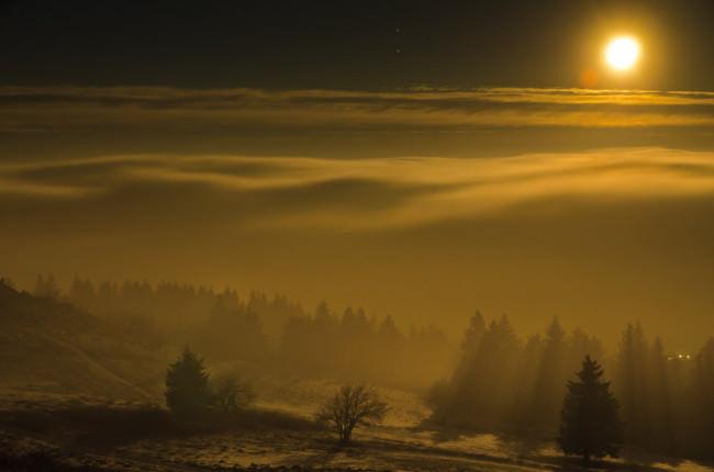 Eine Landschaft, vernebelt, im Vordergrund Bäume und darüber der Mond.