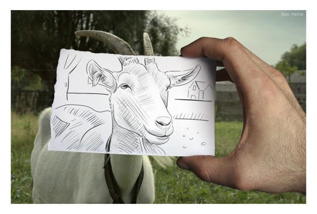 Eine Ziege sehen wir und eine Hand, die vor den Ziegenkopf ein Stück Papier hält, auf dem der Ziegenkopf gezeichnet ist.