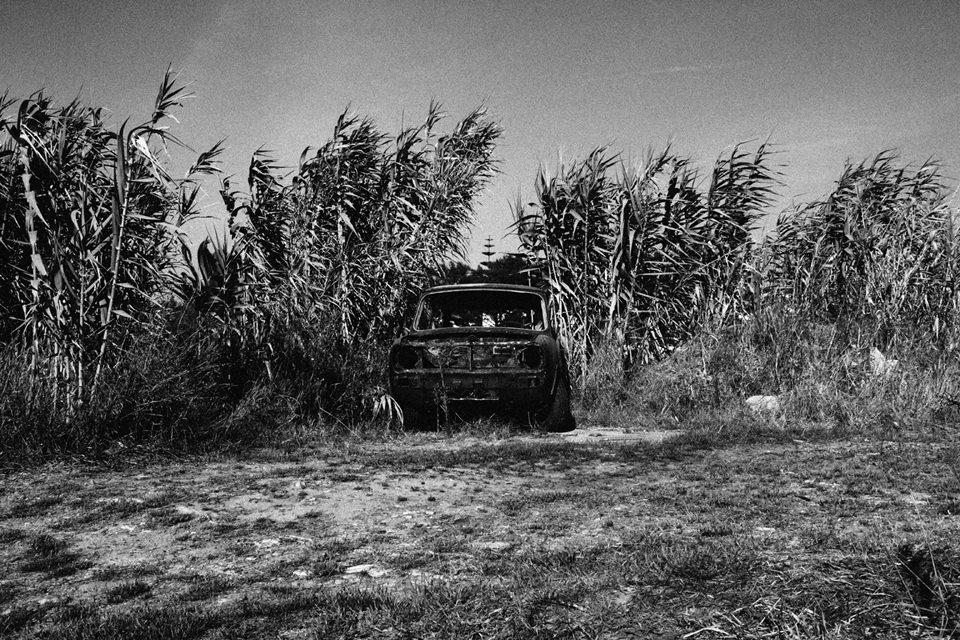 Ein altes Auto zwischen hohen Gräserm