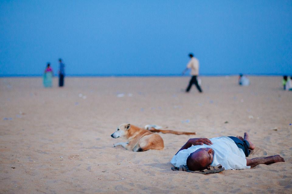 Hund und Mensch am Strand
