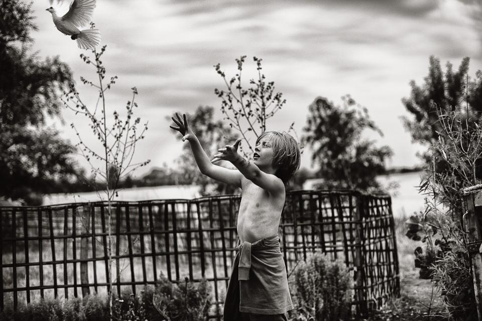 Ein Junge lässt eine Taube fliegen.