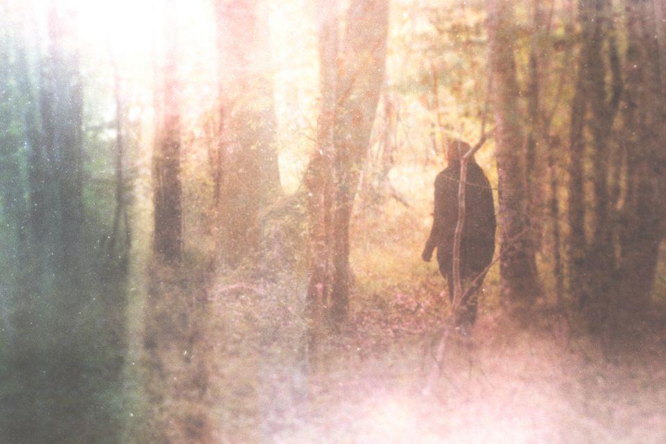 Ein Mensch in einem bunten Wald.