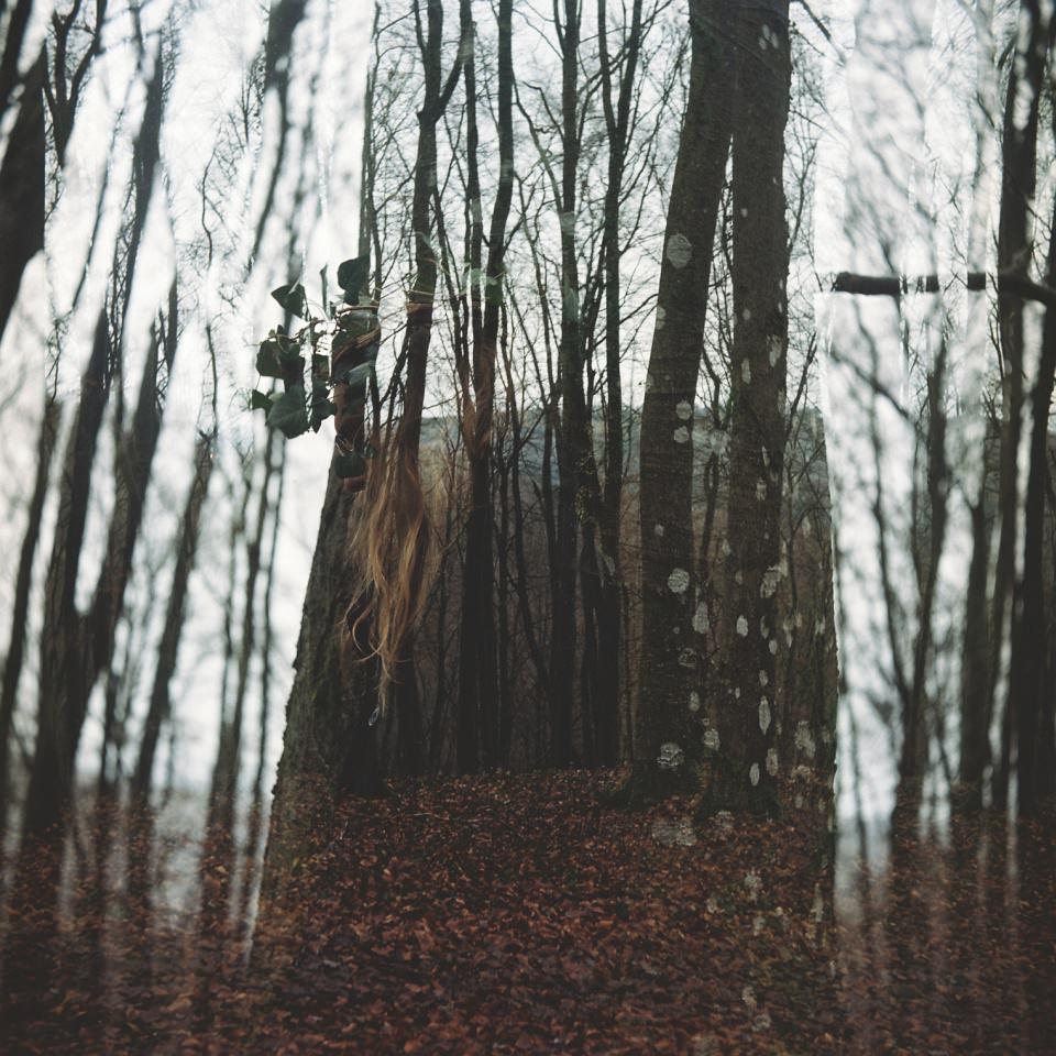Doppelbelichtung mit Wald und einer Person.