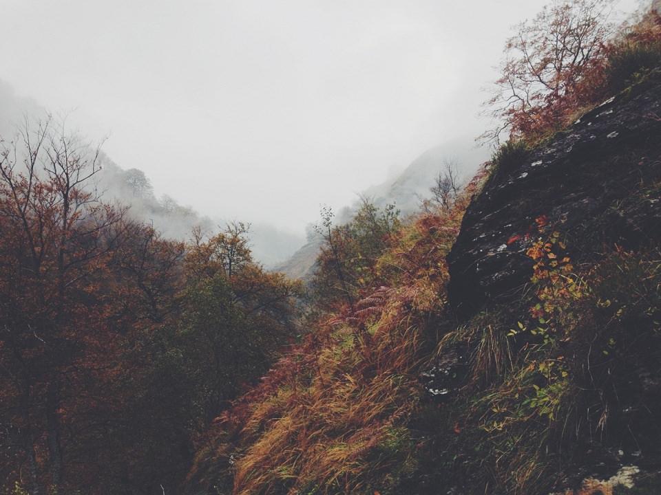 Herbstlich bunte Abhänge im Nebel.
