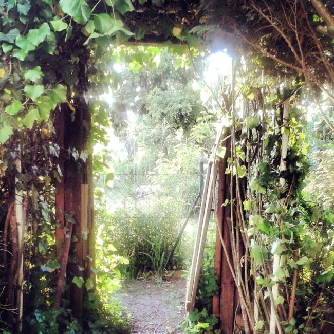 Ein Durchgang ist hell erleuchtet und grün und braun.