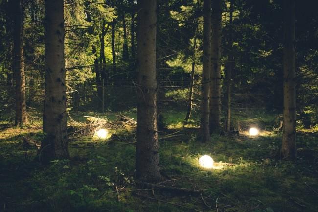 Leuchtende Kugeln zwischen Bäumen.