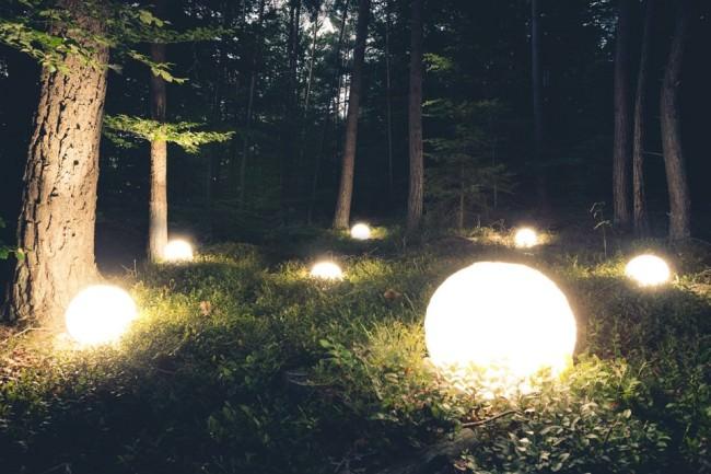 Leuchtende Kugeln auf dem Waldboden verteilt.