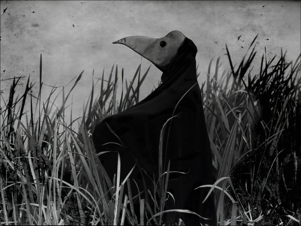 Ein Vogelmann im hohen Gras.