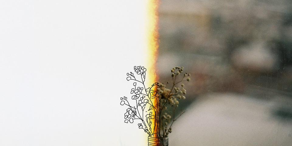 Man sieht etwas weißes und dann etwas buntes und eine Blume, die sieht man auch.
