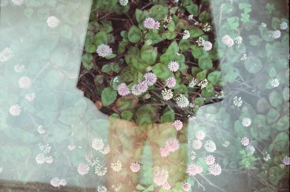 Doppelbelichtung mit Frau und Blumen