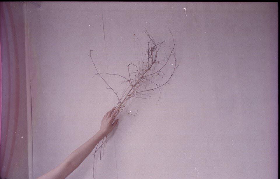 Ein kahler Ast wird an eine Wand gehalten