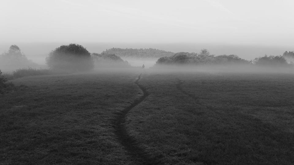 Ein Pfad im Nebel
