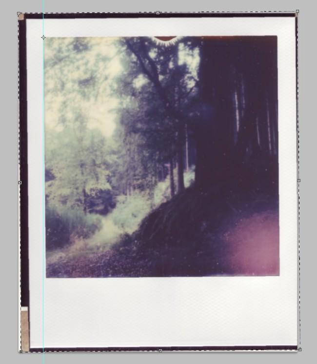 Screenshot aus Photoshop: Polaroid drehen.