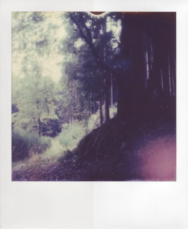 Polaroid mit bearbeitetem und unbearbeitetem Rand.