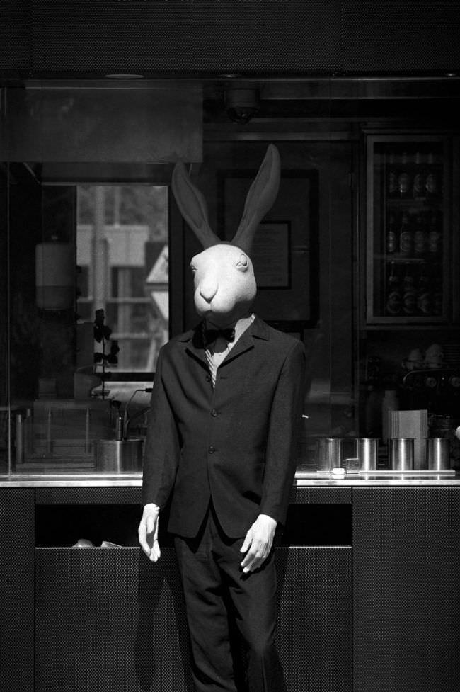 Ein als Hase verkleideter Mann.